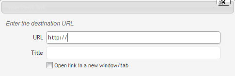 Enter URL in WordPress