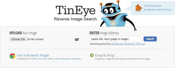 TinEye | Reverse Image Search