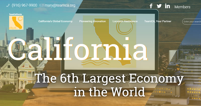 Team California - Website Design by Optimize Worldwide